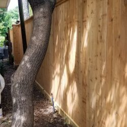 Best Fence-Gallery-12