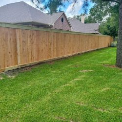Best Fence-Gallery-124