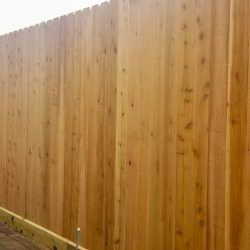 Best Fence-Gallery-37
