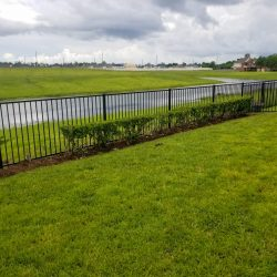 Best Fence-Gallery-39