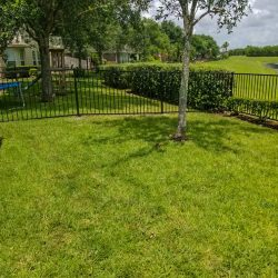 Best Fence-Gallery-46