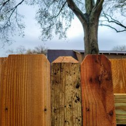 Best Fence-Gallery-68